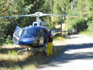 Medivac in the woods