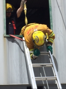 Ladder bail2